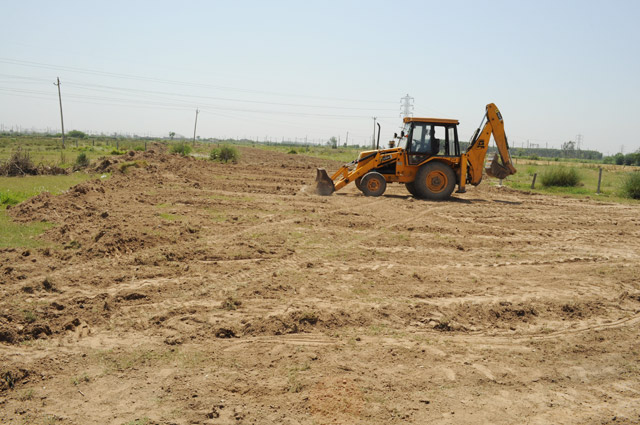Vatika City Central - Service road development & Sec 25 dividing road- 1